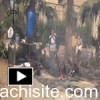 Egypt Mlitary Attack on Cairo