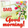 beware of other duplicate morning wishers