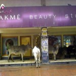 Funny Beauty Parlor