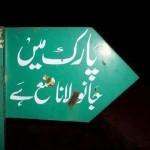 Pakistani Janu